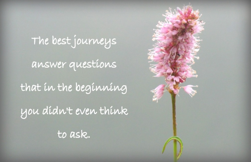 8 motywujących pytań